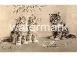 THREE CATS KITTENS OLD ART POSTCARD ARTIST SIGNED N. PARKER - Gatos