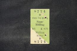 ALLEMAGNE - Ticket De Transport Aller Et Retour - L 88759 - Andere
