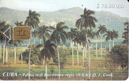 65  TARJETA DE CUBA DE PALMA REAL (PALMERA) - Cuba