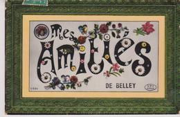 01 - AIN - BELLEY - MES AMITIES - Belley