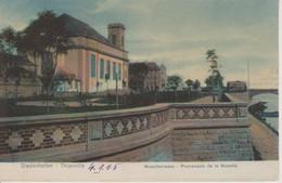 57 - THIONVILLE - PROMENADE DE LA MOSELLE - NELS SERIE PORCELAINE N° 12 - Thionville