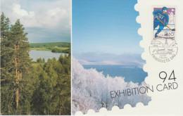 FINLAND  POST CARD FINLANDIA 95 WORLD EXHIBITION ICE HOCKEY STAMP + STOCKHOLM CITY HALL CANCELLED - Cartas