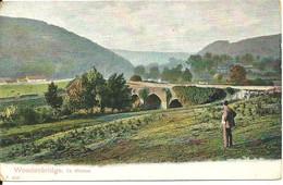 WOODENBRIDGE -  CO. WICKLOW - GOOD WATERFORD POSTMARK - Wicklow