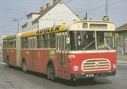 Autobus, Saurer, Gelenkbus; Wiener Stadtwerke; Sonnergasse, Wien - Unclassified