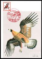 JAPAN (1973) Golden Eagle. Maximum Card With Thematic Cancel. Scott No 1077, Yvert No 1094. - Cartes-maximum