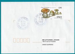 """St.Pierre Et Miquelon 2019 Oblitéré  YT 1228  Champignon  """" Cèpe D'Amérique """"  Cachet St.Pierre - Covers & Documents"""