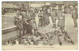 Lyon - Les Pigeons, Place Des Terreaux - Lyon 1