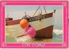 Cote D'opale- Flobart- Bateau De Peche Régional-BL 463882- Cpm - Ohne Zuordnung