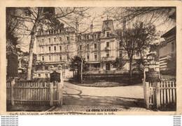 D33  ARCACHON  Grand Hôtel Des Pins Et Continental Dans La Forêt  ..... - Arcachon