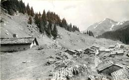 CPSM Montriond-Les Alpages Des Lindarets    L310 - Andere Gemeenten