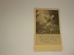 Carte ( 1675 ) Postale  Thema :  Vlaanderen   Vlaams - Patrióticos