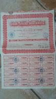 ACTION   De  L ' UNION MINIERE INDOCHINOISE -  Action De Cent Francs - 2 ACTIONS Differentes - Asia