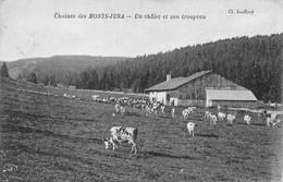 Mouthe Petite Chaux Ferme Chalet Chez Cornet Vaches Troupeau Monts Jura éd Desaix Jouffroy - Other Municipalities