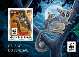 GUINEA BISSAU 2020 - WWF Galago Red Overprint, S/S. Official Issue [GB200514e] - Mono