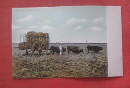 Sugar Cane Field & Car     Cuba   Ref 4678 - Cuba