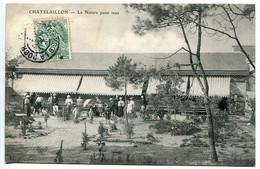 CPA 1907 * CHATELAILLON La Nature Pour Tous ( Très Animée ) - Châtelaillon-Plage