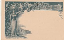 INTERO POSTALE C.10 NOZZE VERDE GRIGIO NUOVO 1896 (HC624 - Postwaardestukken