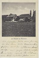 SUISSE - SEHR SELTEN / TRES RARE - Tavannes - La Noisette Sur Tavannes - 1915 - BE Berne