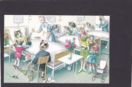 Anthropomorphic Cat Card  -    Cats In Hospital Ward. - Gatos