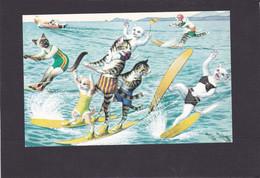 Anthropomorphic Cat Card  -    Cats Water Skiing. - Gatos