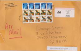ETATS-UNIS USA 2008 Enveloppe PA  Avec Surtaxe Vers La France  Affranch. American Kestrel Et Statue Liberty 6 5 2008 - Cartas