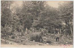 Ecole Nationale D'Agriculture - GRIGNON - Jardin Botanique - Grignon