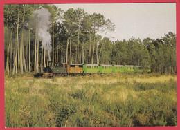 40-LANDES De GASCOGNE - Train De MARQUÈZE- Loco Corpet-Louvet - Wagon DYle Et Bacalan 1903-1913 * Sup*2 Scans - Non Classificati