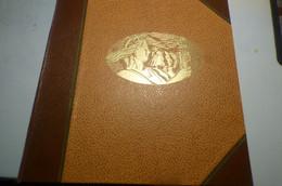 DESTOCK.  COLONIES FRANCAISE Dans Un Vieux Classeur Timbres Neufs ** Et * Et Oblitérés, Pour Débutant Colonies - Collections