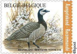 Belg. 2020 - La Bernache Nonnette 4912** (timbre Pour Recommandé)  - De Brandgans** Gratis Verzending (Envoi Gratuit) - Nuevos
