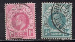 NATAL Scott # 82, 101 Used - KEVII - Natal (1857-1909)
