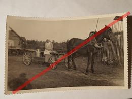 Photo Vintage. Original. Agriculture. Une Femme Sur Un Chariot Porte Du Lait. Lettonie D'avant-guerre - Berufe