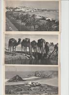 """Reclamekaarten  """" Plasmarine """" -- Maroc Espagnol , Tanger , Ifni  --- Met Zegels ---- 3 Kaarten - Advertising"""