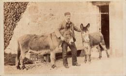 RPPC Jacob And Ned  ANE DONKEY EZEL ESEL MULES Donkeycollection - Ohne Zuordnung