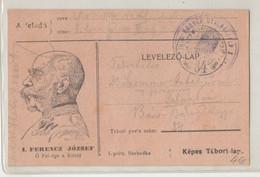 Franz Joseph Illustrated Feldpostkarte Tábori Postai Levelezőlap Posted 1915 FP84 To Palánka B210220 - Ohne Zuordnung