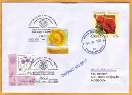 "2020 Moldova Special Commemorative Postmark ""International Year Of Plant Health 2020"" Flowers Botany. Roses. - Moldawien (Moldau)"