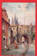 YORKSHIRE BRIDLINGTON   BAYLE GATE    RAPHAEL TUCK   BRIDLINGTON SERIES    Pu 1913 - Altri