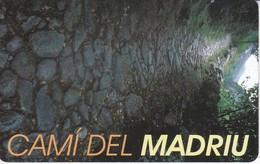 AND-142 TARJETA DE ANDORRA CAMI DEL MADRIU - Andorra