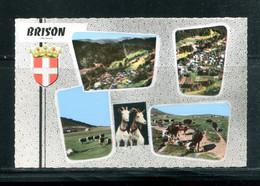 BRISON (carte Vierge Multivues) - Otros Municipios