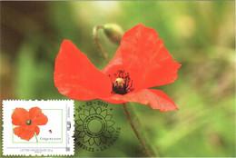 Carte Maximum YT Collector 84 Timbres à Semer (COQUELICOT) Obl Spé Ill 1er Jour 26 02 2011 TBE Nesles-la Vallée (95) - 2010-...