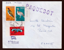 Israel Paquebot Beleg - Cartas