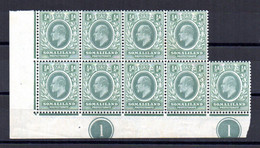 SOMALILAND 1904 KEVII - BLOCCO DI 9 Sc 27 SG 32 MNH** ADF - Somaliland (Herrschaft ...-1959)