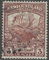 Newfoundland. 1919 Newfoundland Contingent. 3c Used SG 132 - 1908-1947