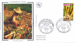 Enveloppe 1er Jour La France à Vivre 2005, La Canne à Sucre, 2005 (YT 3776) - 2000-2009