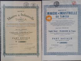 Lot TAMEGA Mijnbouw - Mineral