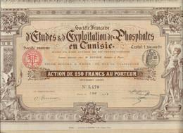 SOCIETE FRANCAISE D'ETUDES ET D'EXPLOITATION DE PHOSPHATES EN TUNISIE -ACTION ILLUSTREE DE 250 FRS -ANNEE 1908 - Mineral