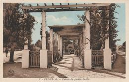 FEDHALA  (Mohammédia Maroc) - Entrée Du Jardin Public - Cpa état Neuf - Otros