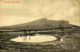 8264  -  Iles FEROE  :  Dam Paa Store Dimon   - édit :J. Lützen, Thorshaun - Eneret 20922 - Faroe Islands