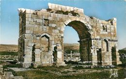 CPSM L'Arc De Triomphe à Volubilis     L308 - Non Classificati