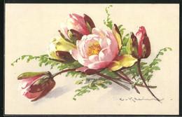 Künstler-AK Catharina Klein: Blumen Und Farn - Klein, Catharina