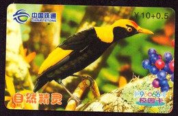 TK -  N02484 CHINA - Prepaid China Tietong Bird - Otros